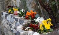Primavera 2011 (40).jpg