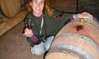 Wine tasting at cellar