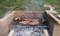 Inauguration BBQ