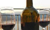 Tasting Wine sm.jpg